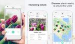 Identifique plantas com a câmera do smartphone