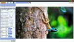 Retoque facilmente suas fotos no PC com o FenoPhoto