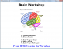 Exercite sua mente com o Brain Workshop